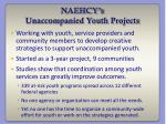naehcy s unaccompanied youth projects