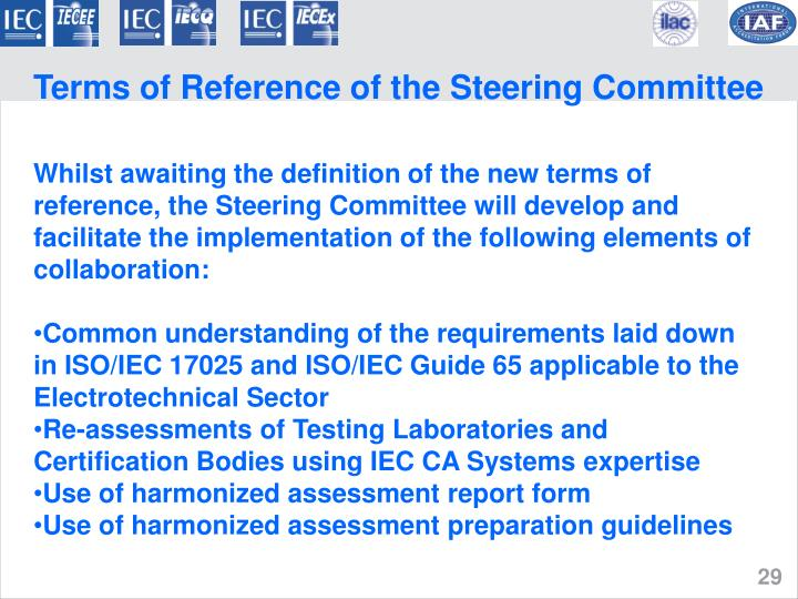 Terms of Reference of the Steering Committee