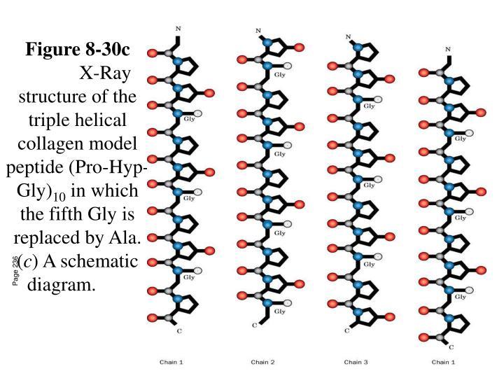 Figure 8-30c