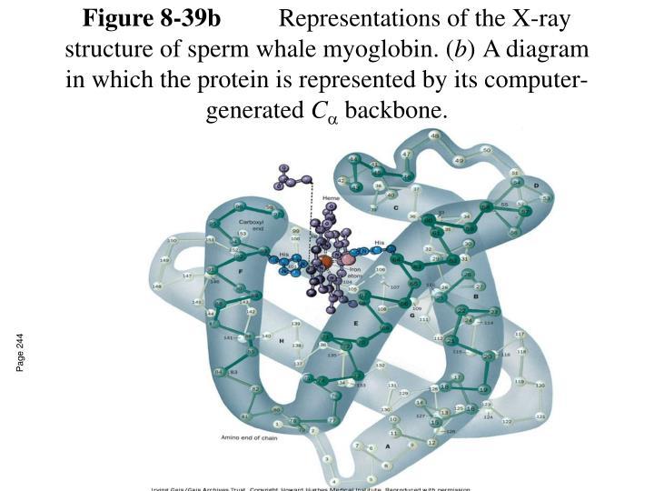 Figure 8-39b