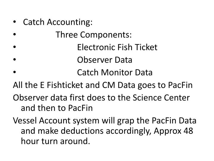 Catch Accounting:
