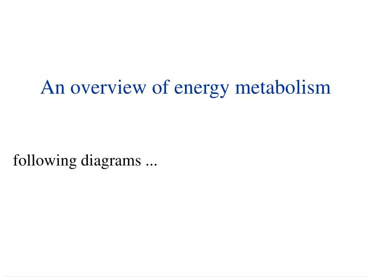 An overview of energy metabolism