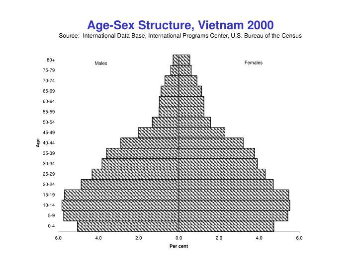 Age-Sex Structure, Vietnam 2000