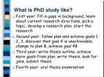 what is phd study like1