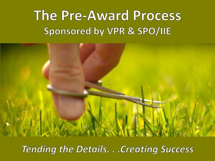 The pre award process sponsored by vpr spo iie tending the details c reating success