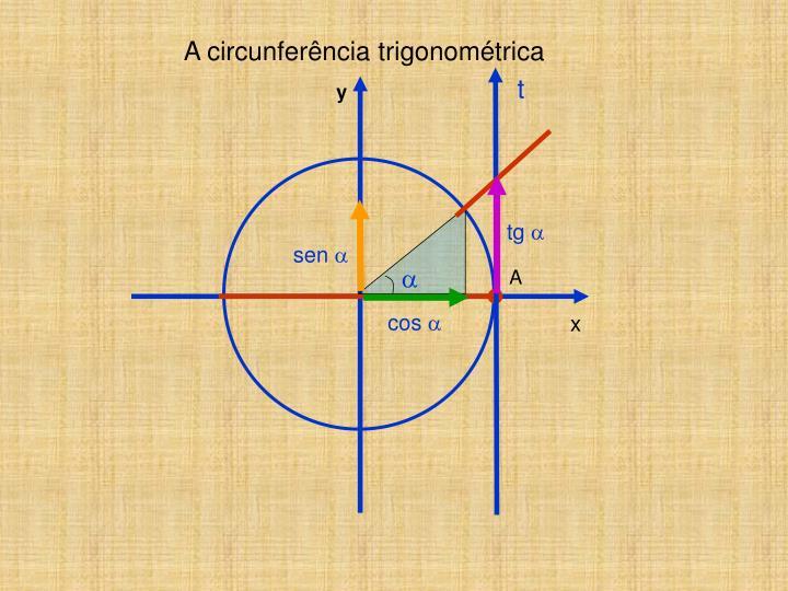 A circunferência trigonométrica
