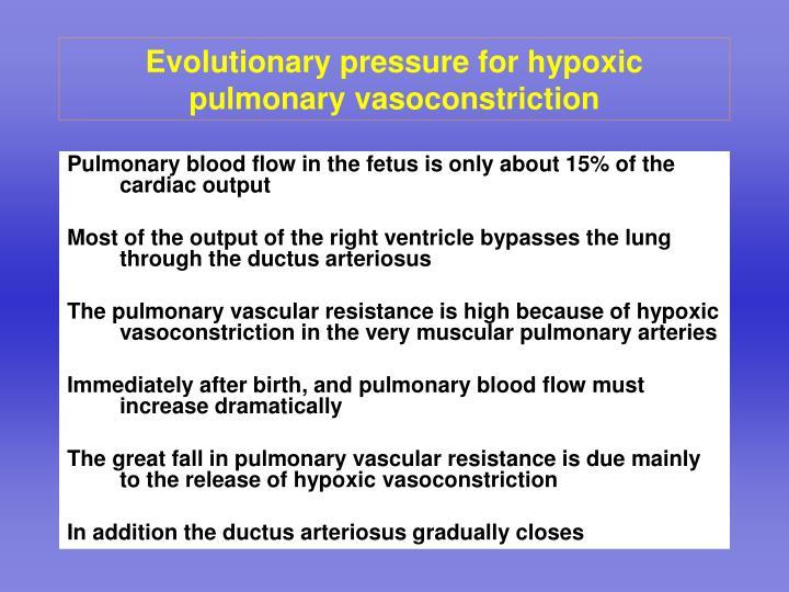 Evolutionary pressure for hypoxic pulmonary vasoconstriction