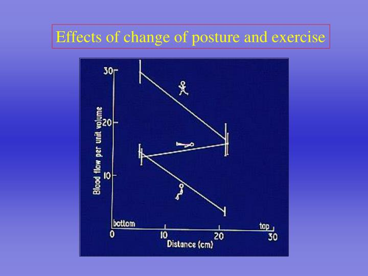 Effects of change of posture and exercise