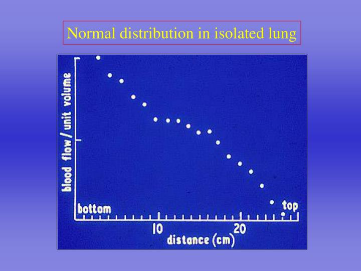 Normal distribution in isolated lung