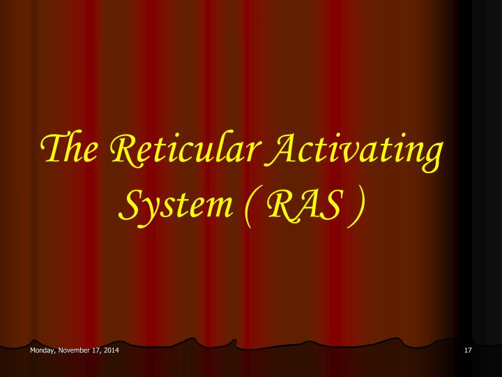 The Reticular Activating System ( RAS )