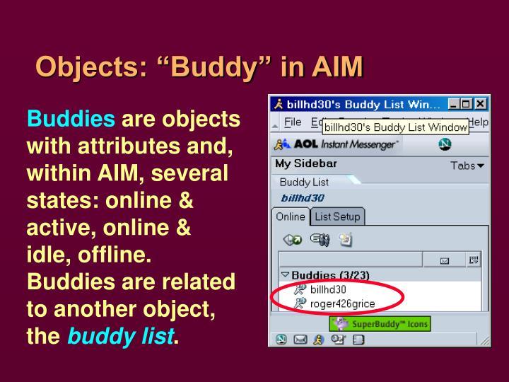 "Objects: ""Buddy"" in AIM"