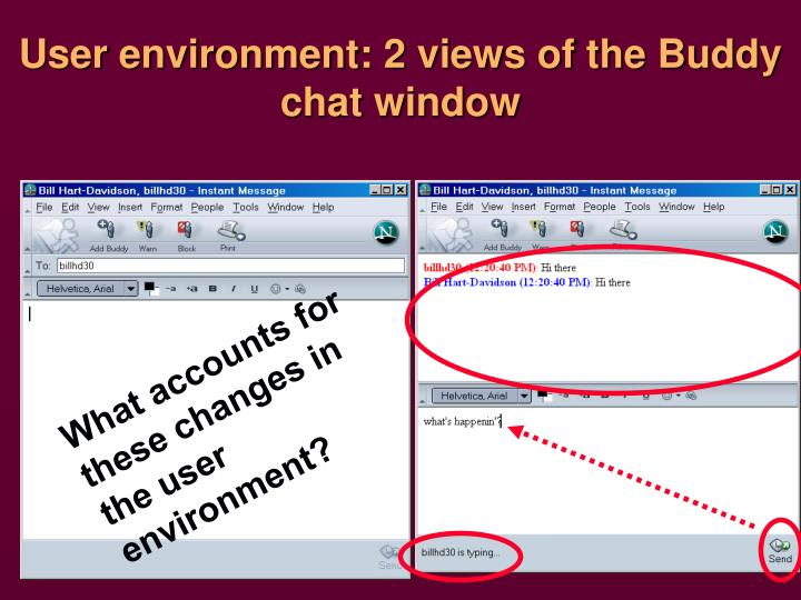 User environment: 2 views of the Buddy chat window
