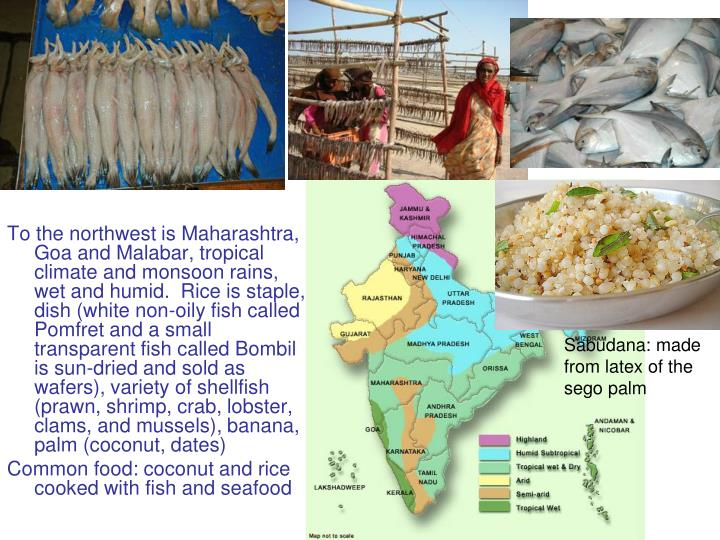 To the northwest is Maharashtra, Goa and Malabar, tropical climate and monsoon rains, wet and humid.  Rice is staple, dish (white non-oily fish called Pomfret and a small transparent fish called Bombil is sun-dried and sold as wafers), variety of shellfish (prawn, shrimp, crab, lobster, clams, and mussels), banana, palm (coconut, dates)