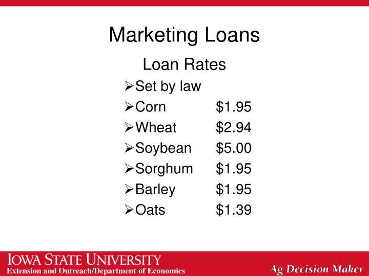 Marketing Loans