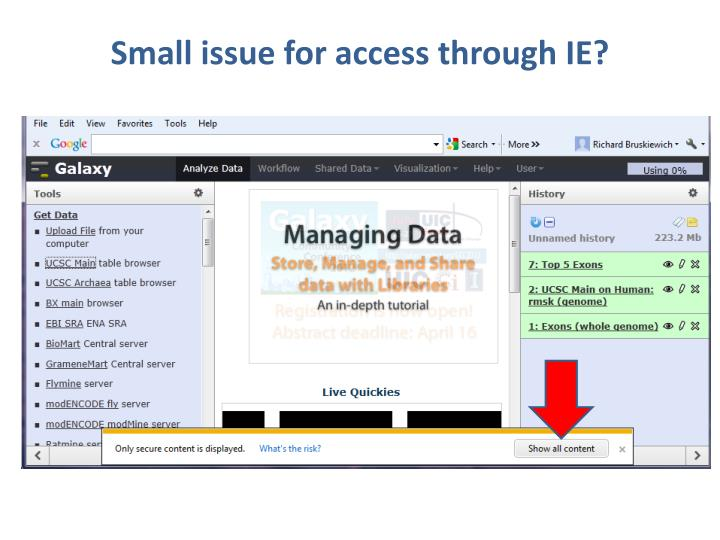 Small issue for access through IE?