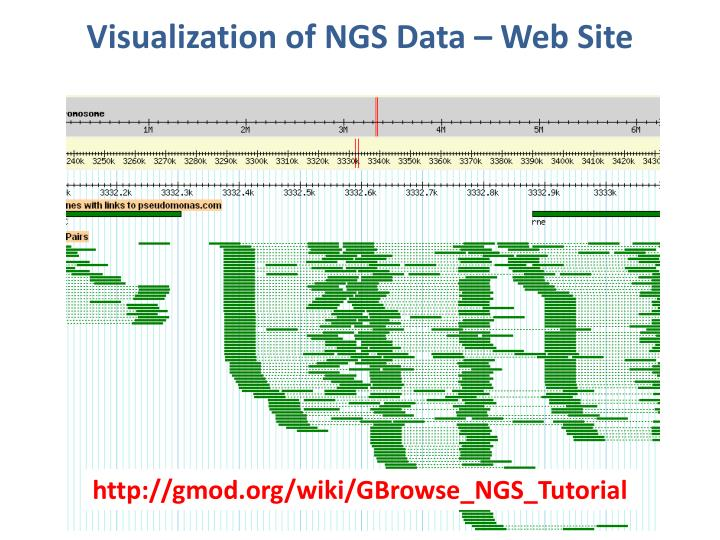 Visualization of NGS Data