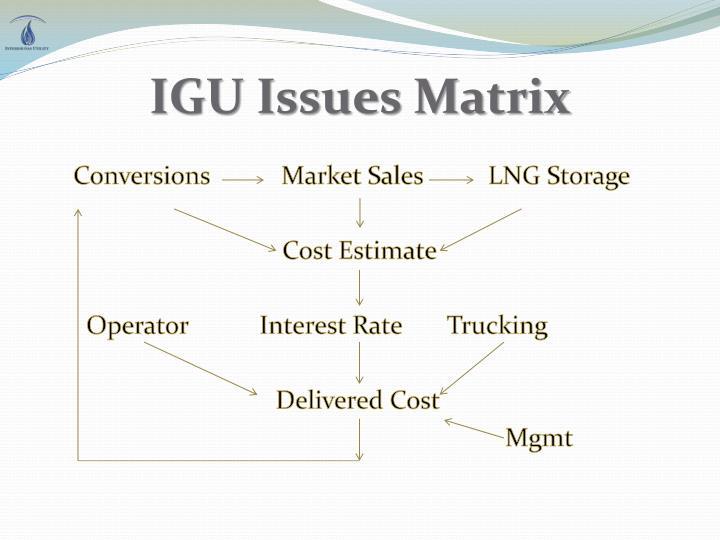 IGU Issues Matrix