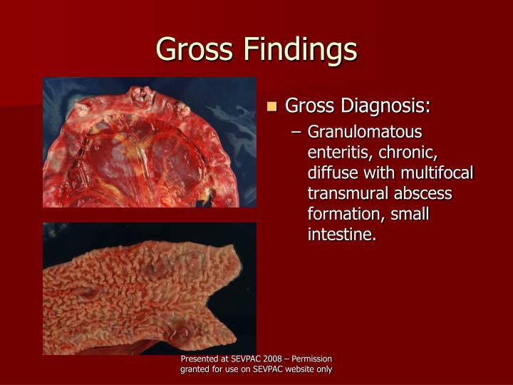 Gross findings