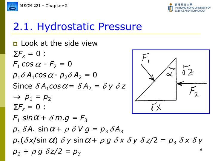 2.1. Hydrostatic Pressure