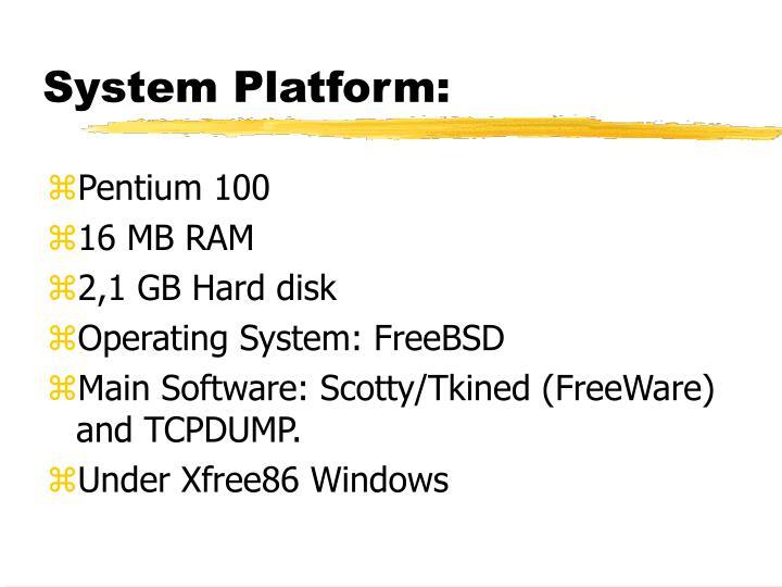 System Platform: