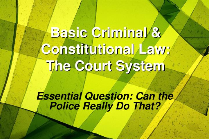 basic criminal constitutional law the court system n.