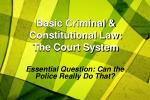 basic criminal constitutional law the court system