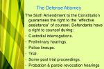 the defense attorney