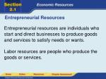 entrepreneurial resources3