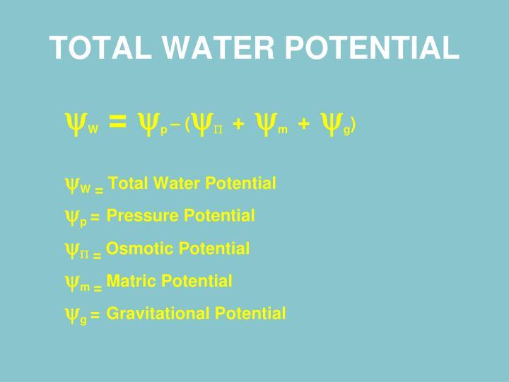 TOTAL WATER POTENTIAL