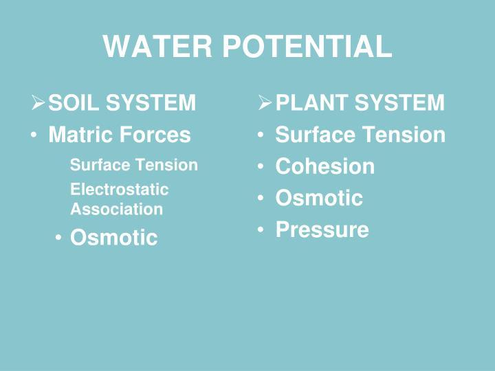 SOIL SYSTEM