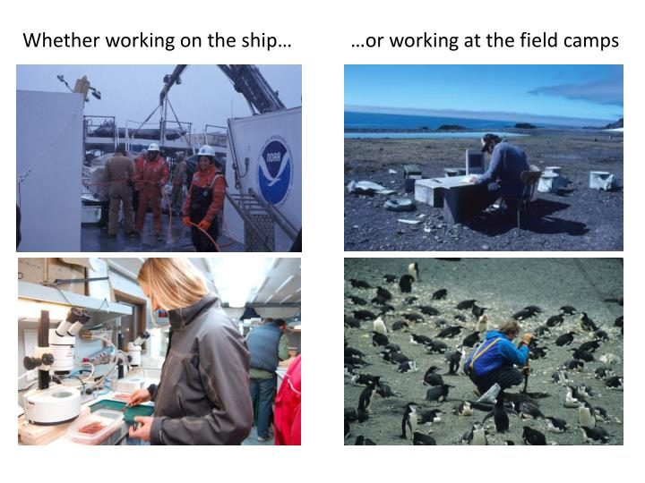 Whether working on the ship…