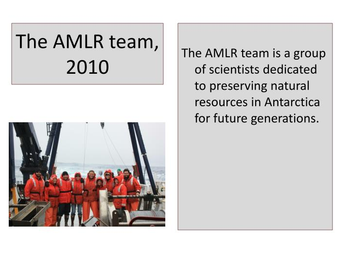 The amlr team 2010