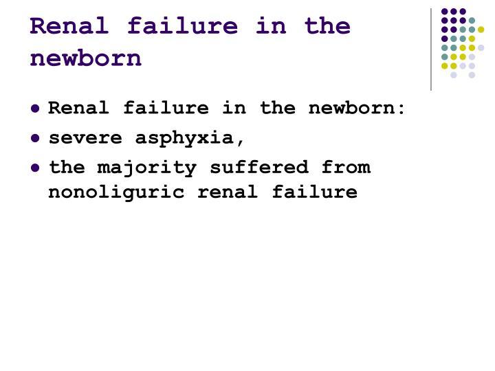 Renal failure in the newborn