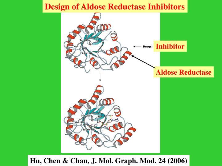 Design of Aldose Reductase Inhibitors
