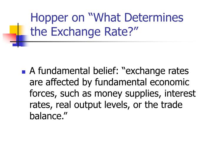 "Hopper on ""What Determines the Exchange Rate?"""