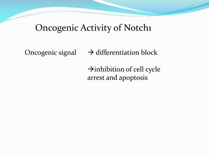 Oncogenic Activity of Notch1