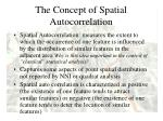 the concept of spatial autocorrelation