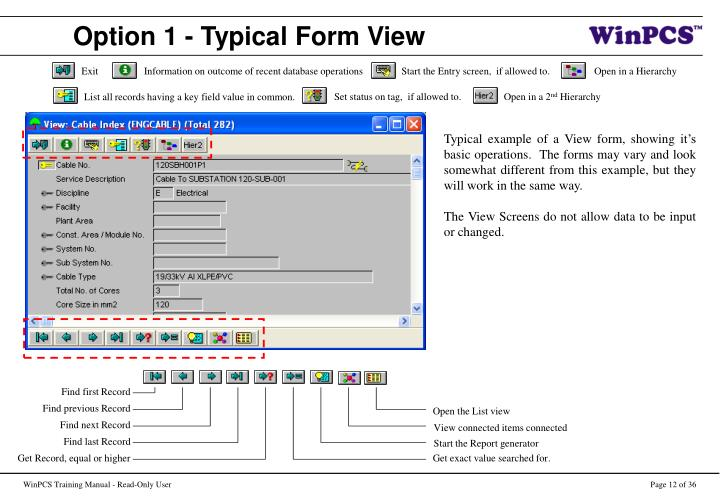 Option 1 - Typical Form View