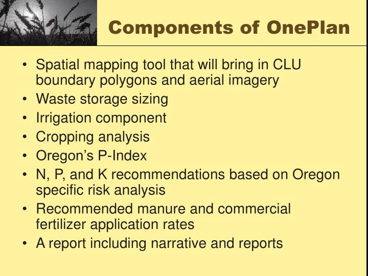 Components of oneplan