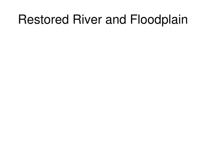Restored River and Floodplain