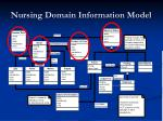 nursing domain information model