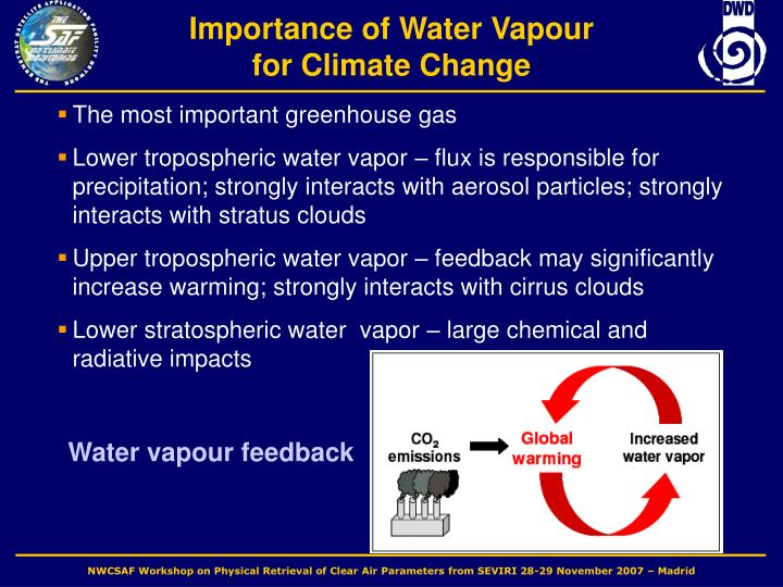 Water vapour feedback