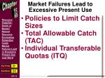 market failures lead to excessive present use2