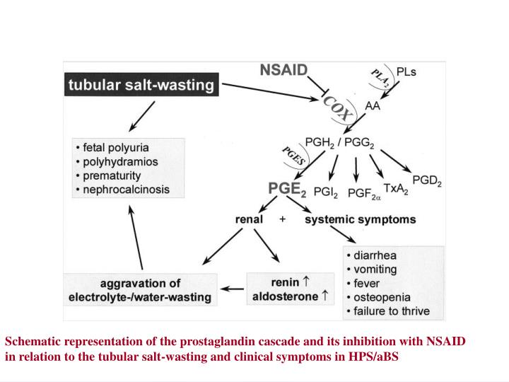 Schematic representation of the prostaglandin cascade and its inhibition with NSAID