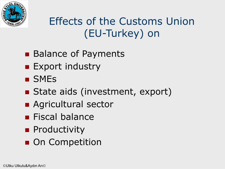 Effects of the Customs Union