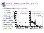 muon channel detached j