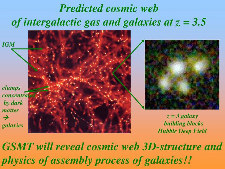 Predicted cosmic web