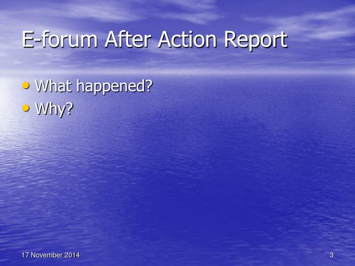 E forum after action report