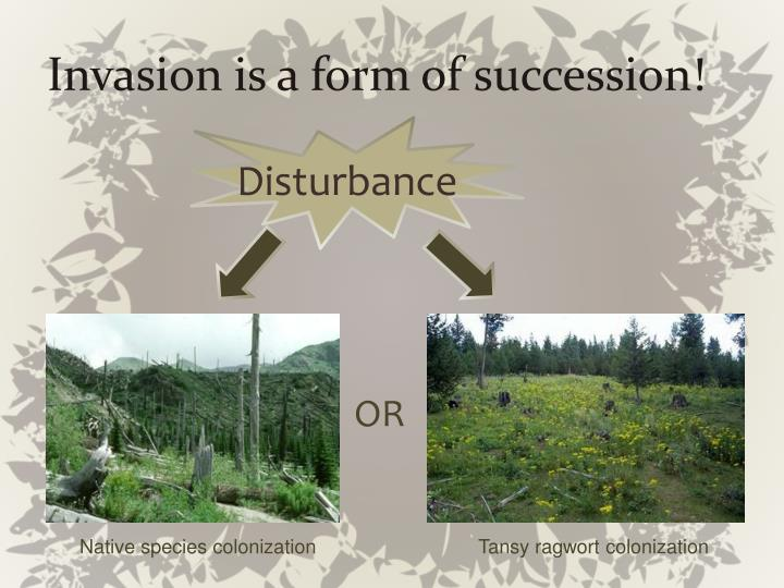 Invasion is a form of succession!
