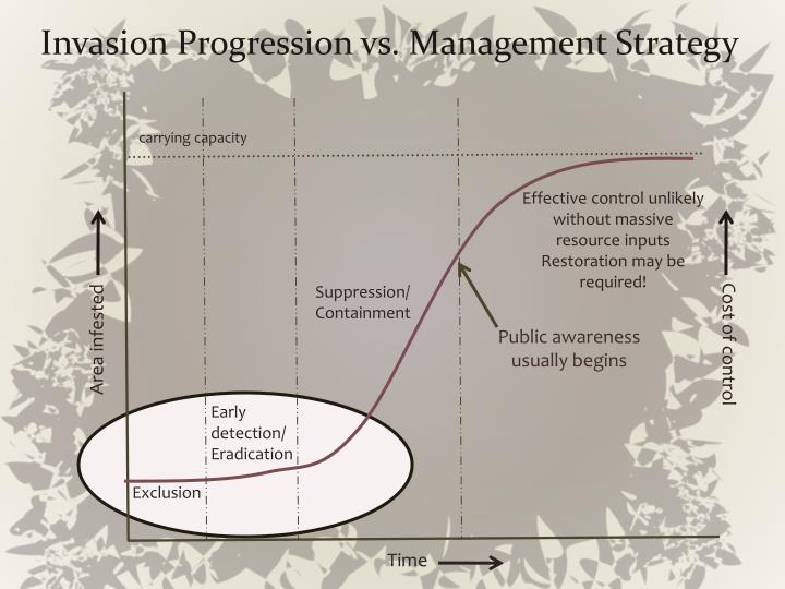 Invasion Progression vs. Management Strategy